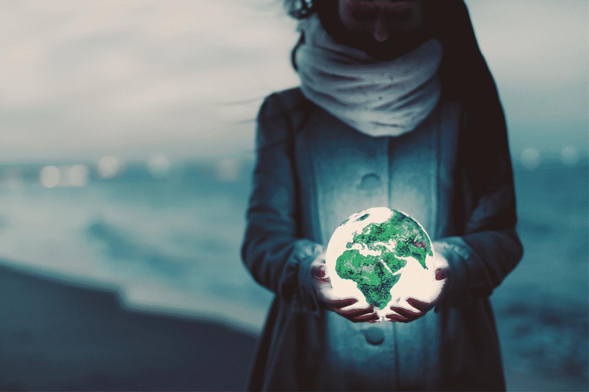 Sostenibilità | Articolo Blog